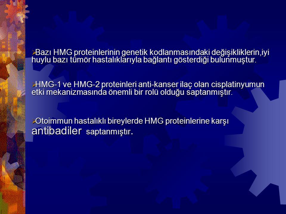 Bazı HMG proteinlerinin genetik kodlanmasındaki değişikliklerin,iyi huylu bazı tümör hastalıklarıyla bağlantı gösterdiği bulunmuştur.