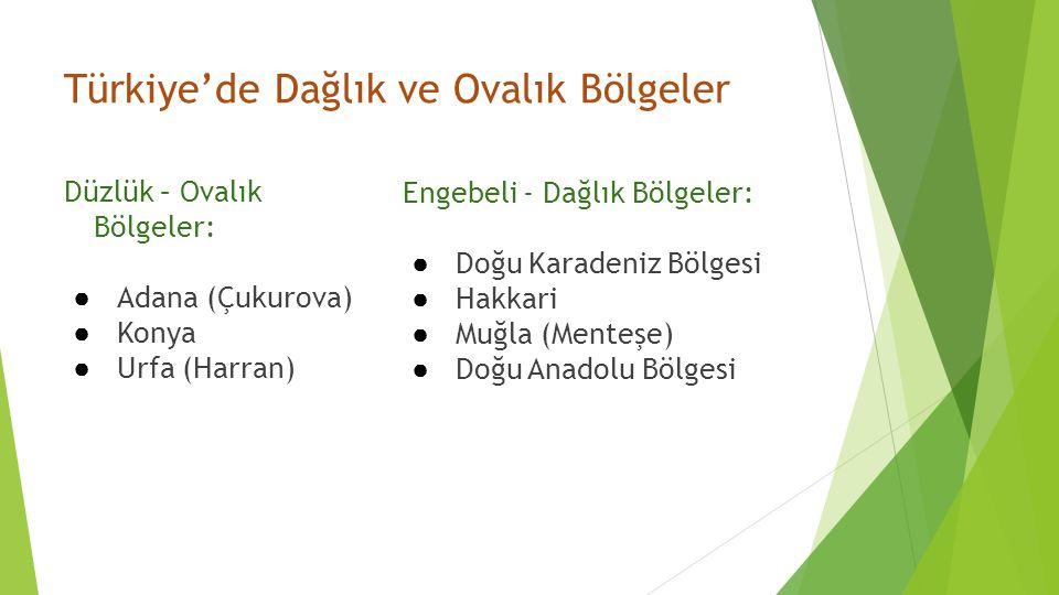 Türkiye'de Dağlık ve Ovalık Bölgeler