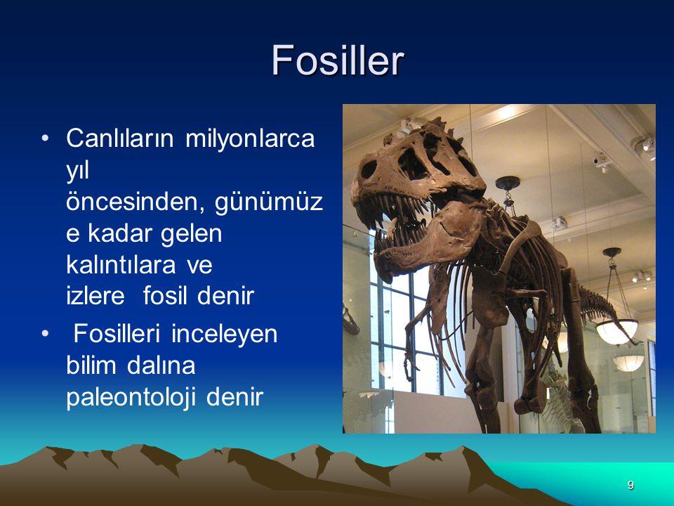 Fosiller Canlıların milyonlarca yıl öncesinden, günümüze kadar gelen kalıntılara ve izlere fosil denir.