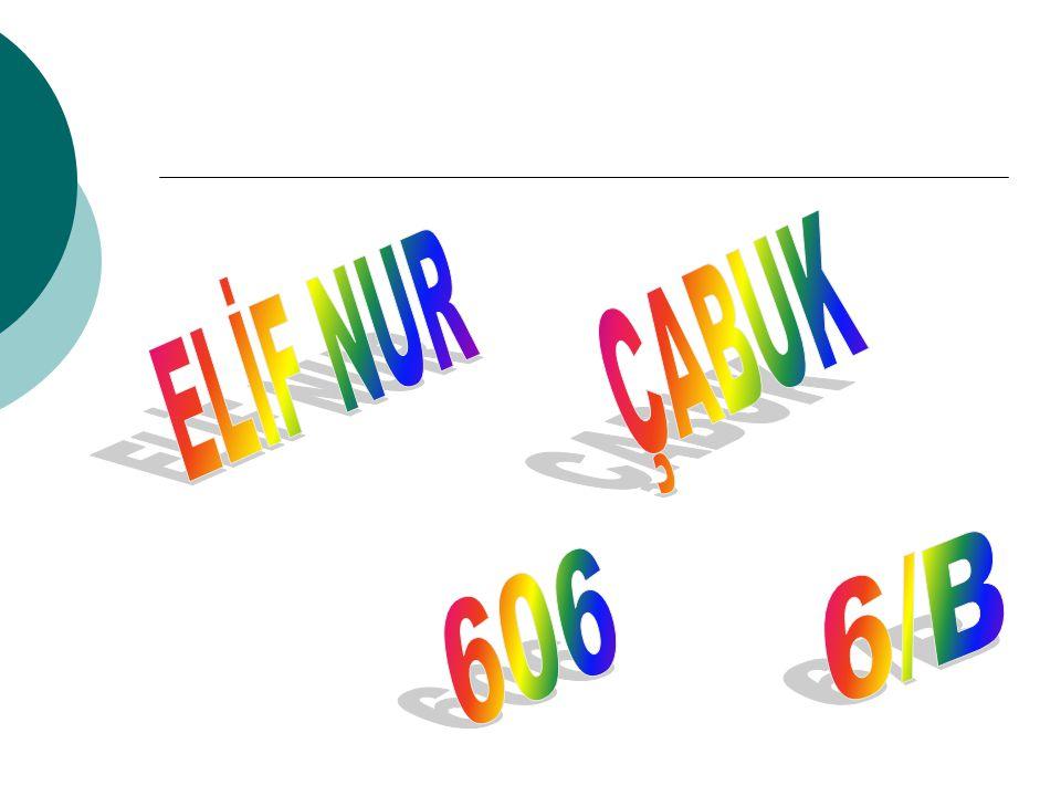 ELİF NUR ÇABUK 6/B 606