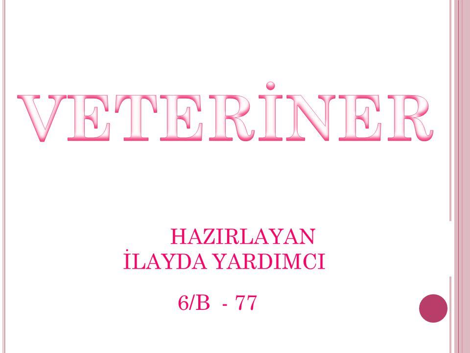 VETERİNER HAZIRLAYAN İLAYDA YARDIMCI 6/B - 77