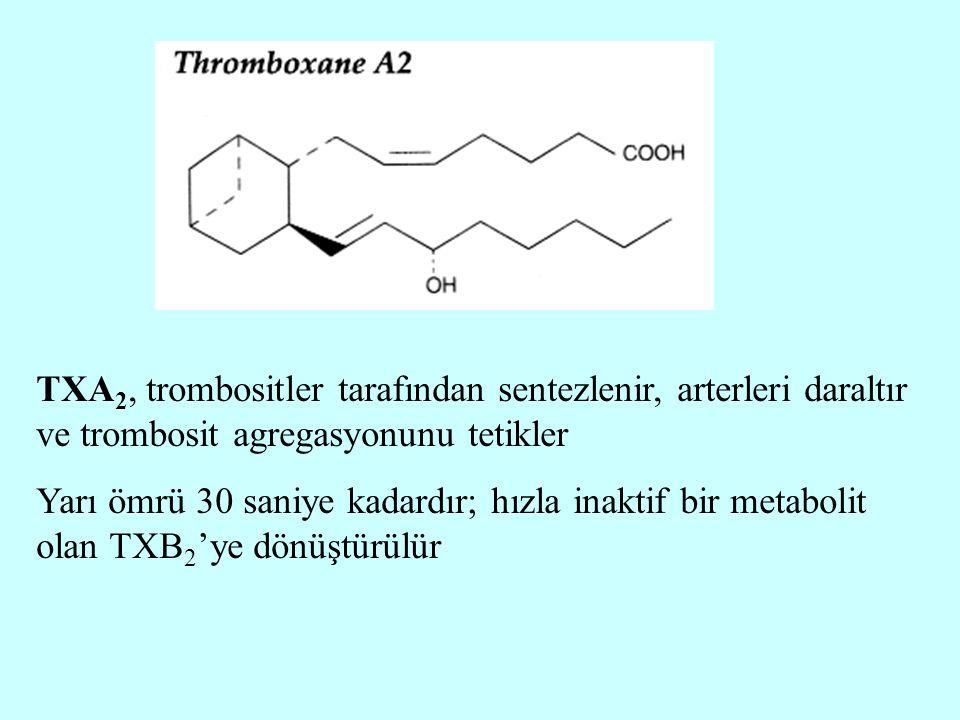 TXA2, trombositler tarafından sentezlenir, arterleri daraltır ve trombosit agregasyonunu tetikler