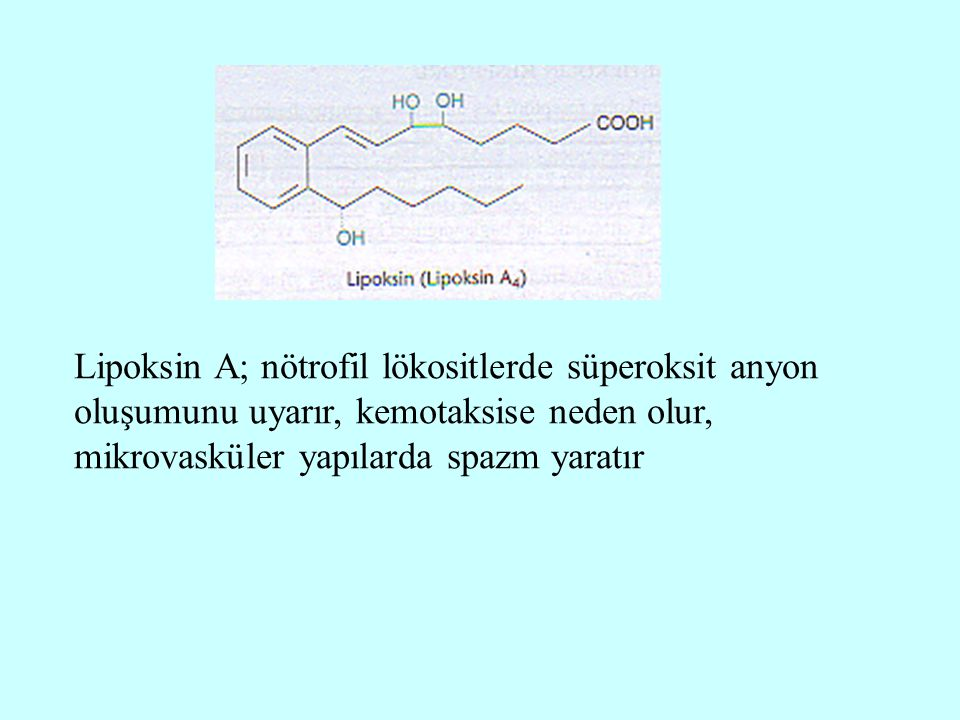 Lipoksin A; nötrofil lökositlerde süperoksit anyon oluşumunu uyarır, kemotaksise neden olur, mikrovasküler yapılarda spazm yaratır