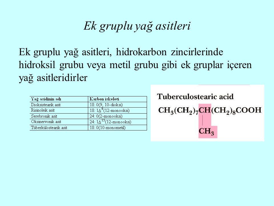 Ek gruplu yağ asitleri Ek gruplu yağ asitleri, hidrokarbon zincirlerinde hidroksil grubu veya metil grubu gibi ek gruplar içeren yağ asitleridirler.