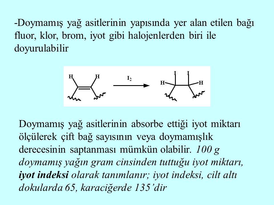 -Doymamış yağ asitlerinin yapısında yer alan etilen bağı fluor, klor, brom, iyot gibi halojenlerden biri ile doyurulabilir