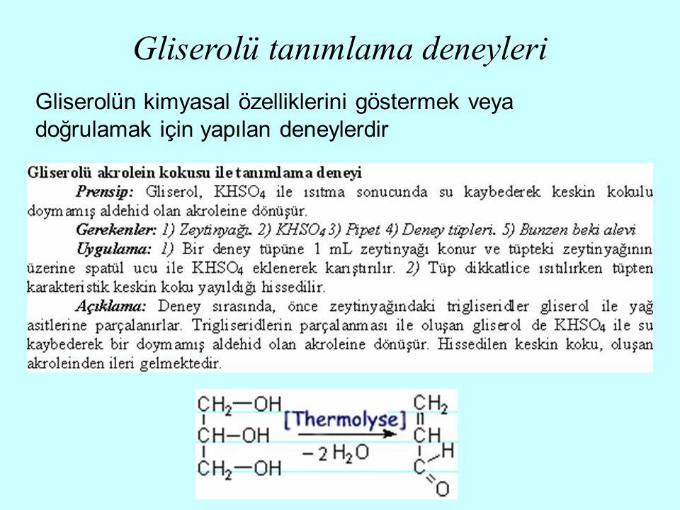 Gliserolü tanımlama deneyleri