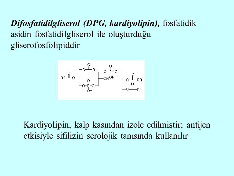 Difosfatidilgliserol (DPG, kardiyolipin), fosfatidik asidin fosfatidilgliserol ile oluşturduğu gliserofosfolipiddir