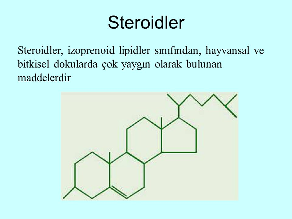 Steroidler Steroidler, izoprenoid lipidler sınıfından, hayvansal ve bitkisel dokularda çok yaygın olarak bulunan maddelerdir.