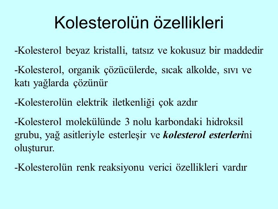 Kolesterolün özellikleri