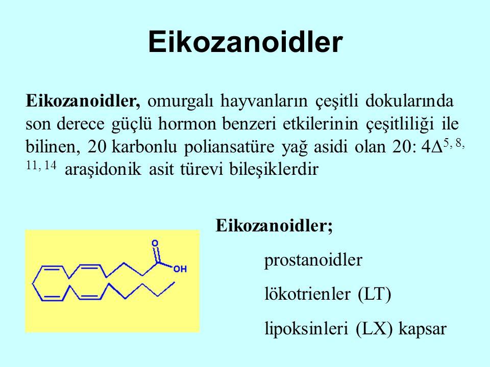 Eikozanoidler