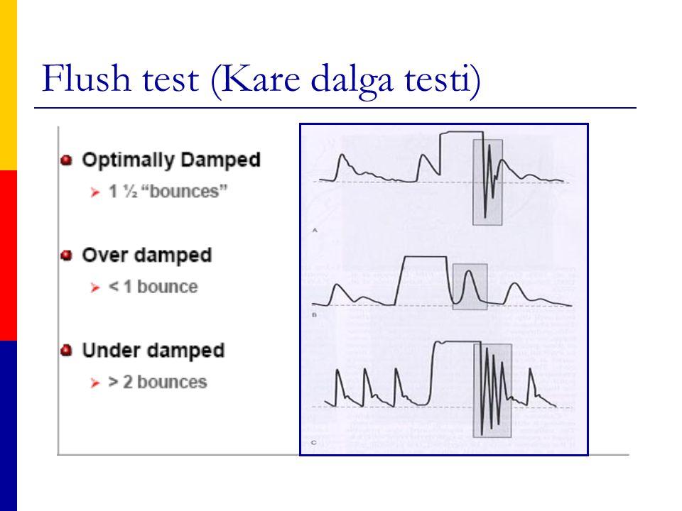 Flush test (Kare dalga testi)