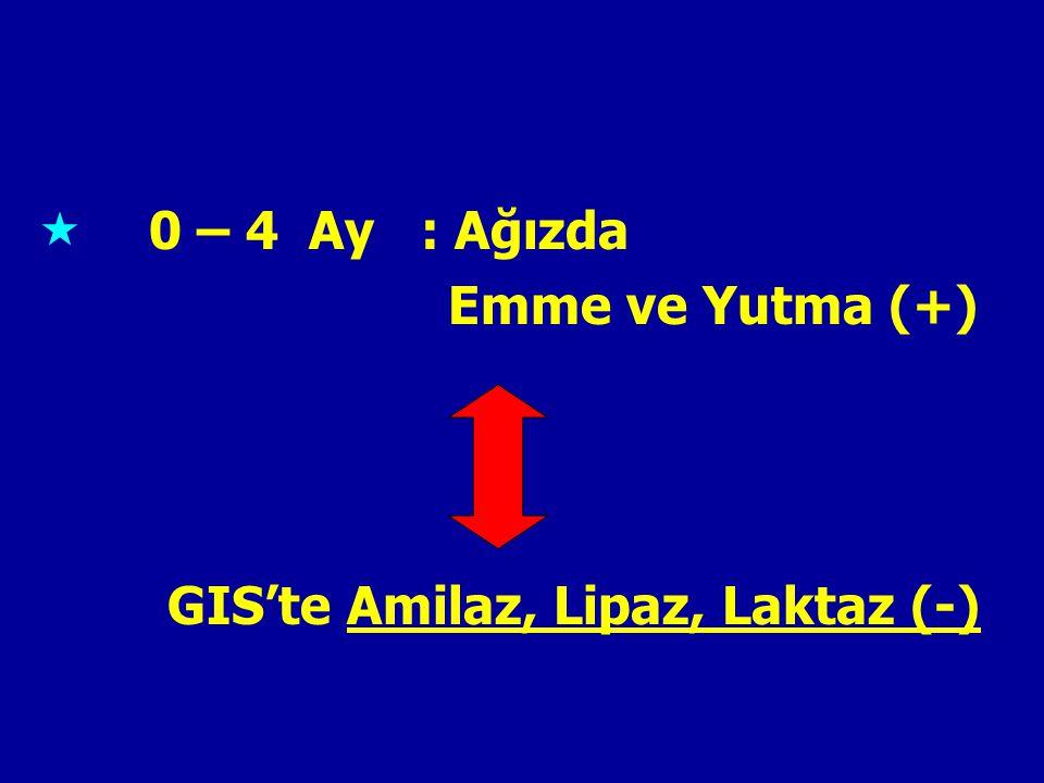 0 – 4 Ay : Ağızda Emme ve Yutma (+) GIS'te Amilaz, Lipaz, Laktaz (-)