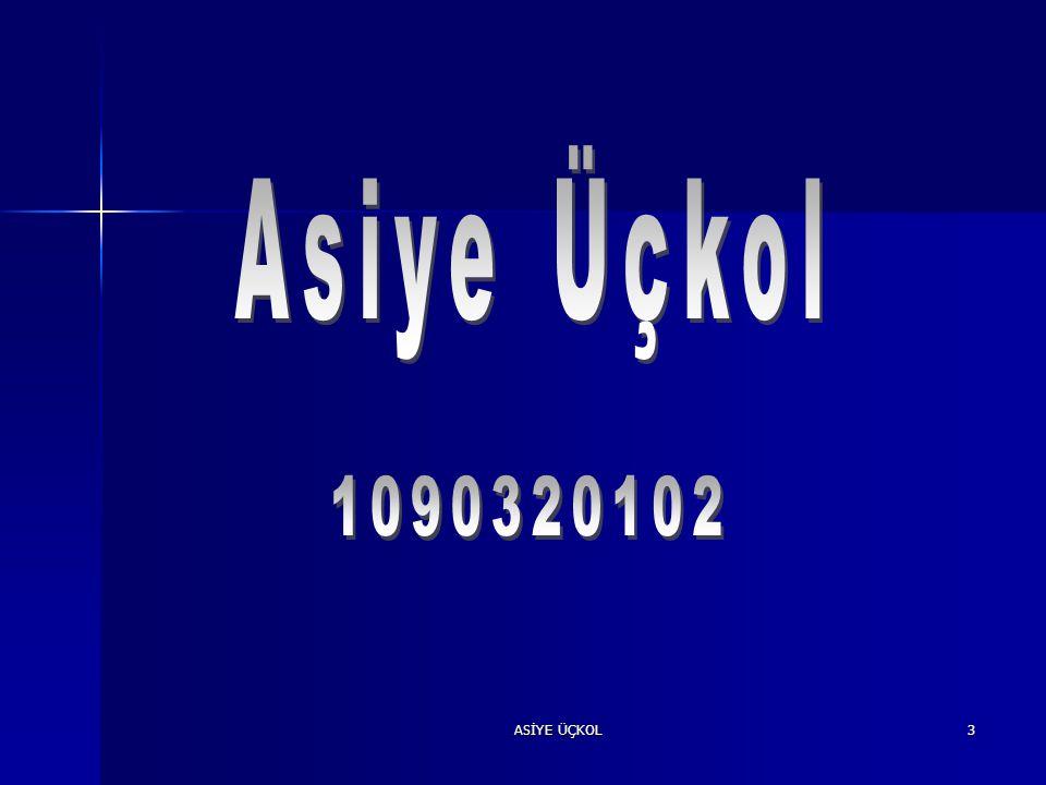 Asiye Üçkol 1090320102 ASİYE ÜÇKOL