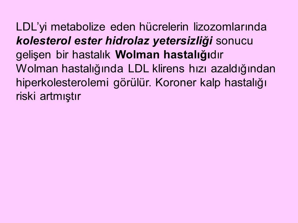 LDL'yi metabolize eden hücrelerin lizozomlarında kolesterol ester hidrolaz yetersizliği sonucu gelişen bir hastalık Wolman hastalığıdır