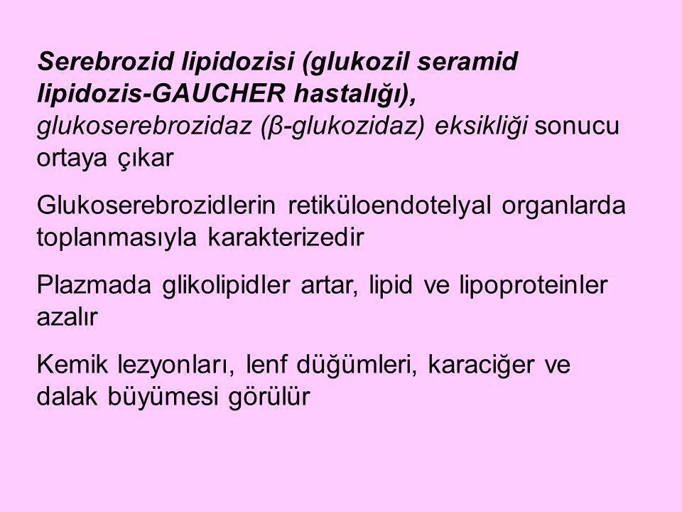 Serebrozid lipidozisi (glukozil seramid lipidozis-GAUCHER hastalığı), glukoserebrozidaz (β-glukozidaz) eksikliği sonucu ortaya çıkar