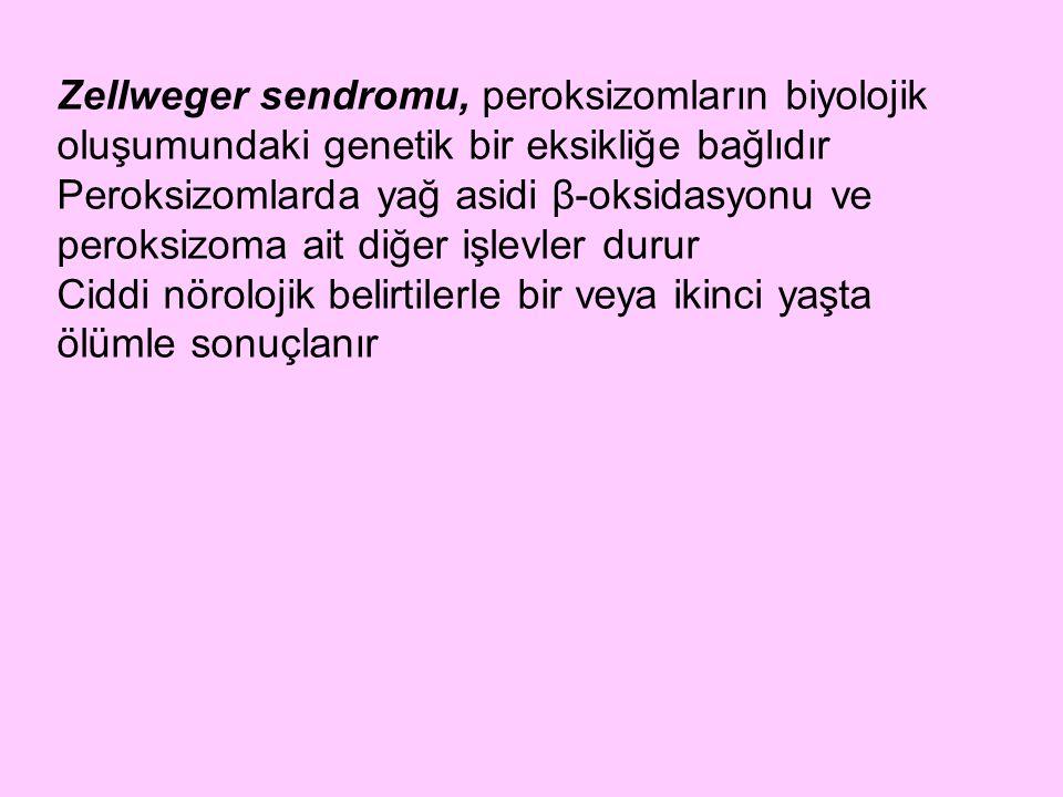 Zellweger sendromu, peroksizomların biyolojik oluşumundaki genetik bir eksikliğe bağlıdır