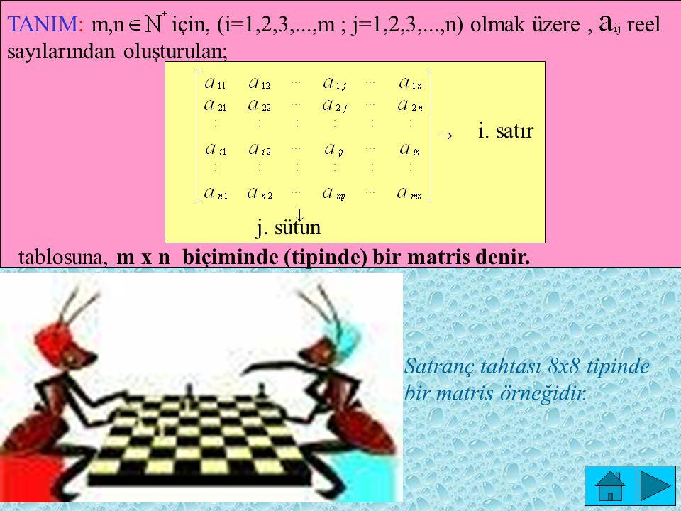 tablosuna, m x n biçiminde (tipinde) bir matris denir.