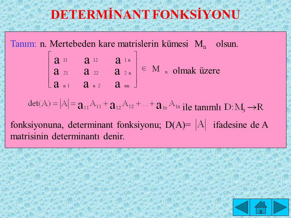 DETERMİNANT FONKSİYONU
