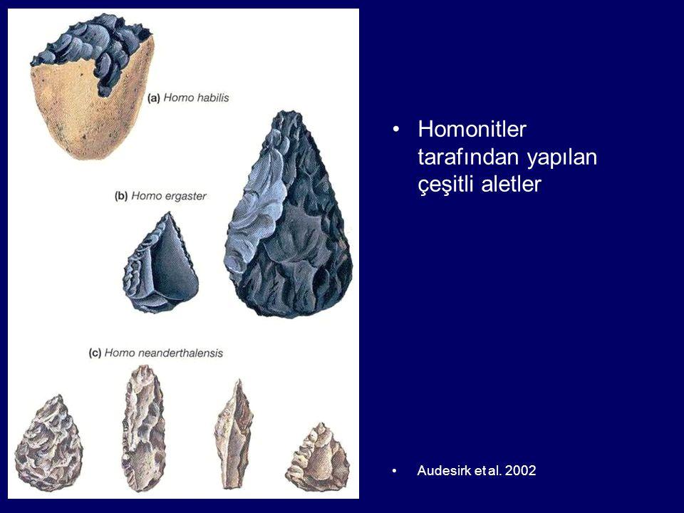 Homonitler tarafından yapılan çeşitli aletler