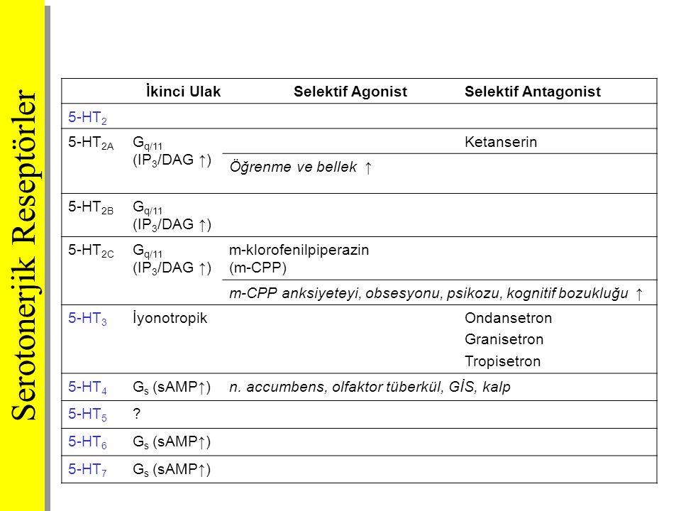 Serotonerjik Reseptörler