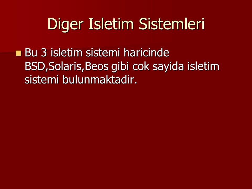 Diger Isletim Sistemleri
