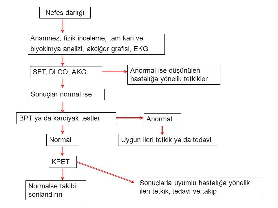 Nefes darlığı Anamnez, fizik inceleme, tam kan ve. biyokimya analizi, akciğer grafisi, EKG. SFT, DLCO, AKG.