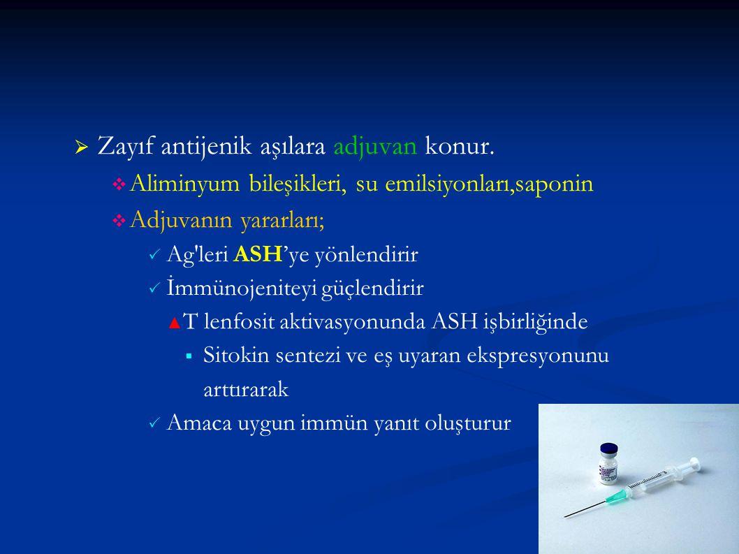 Zayıf antijenik aşılara adjuvan konur.