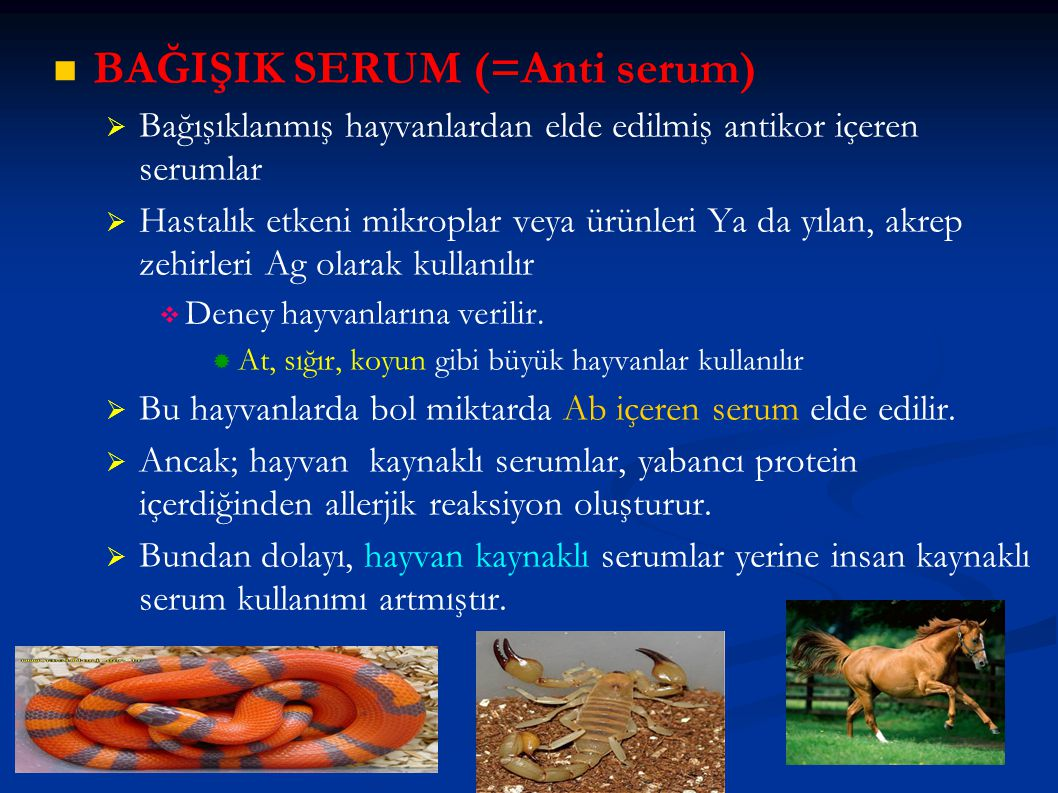 BAĞIŞIK SERUM (=Anti serum)