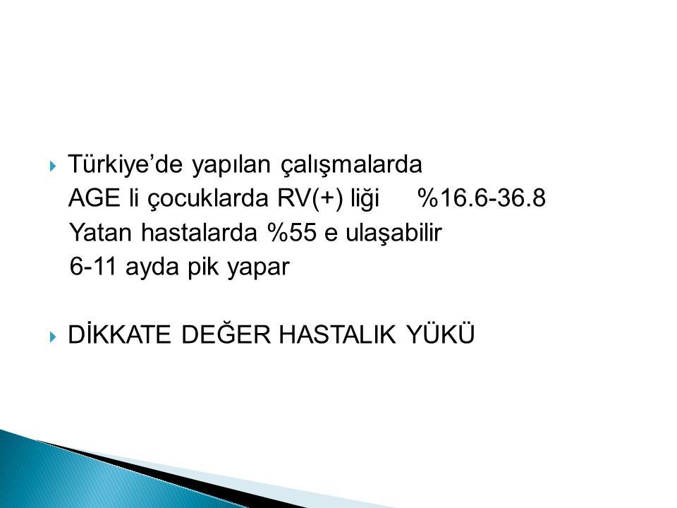 Türkiye'de yapılan çalışmalarda
