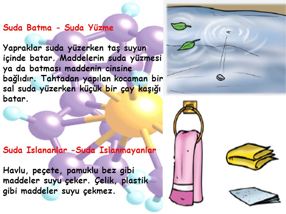 Suda Batma - Suda Yüzme
