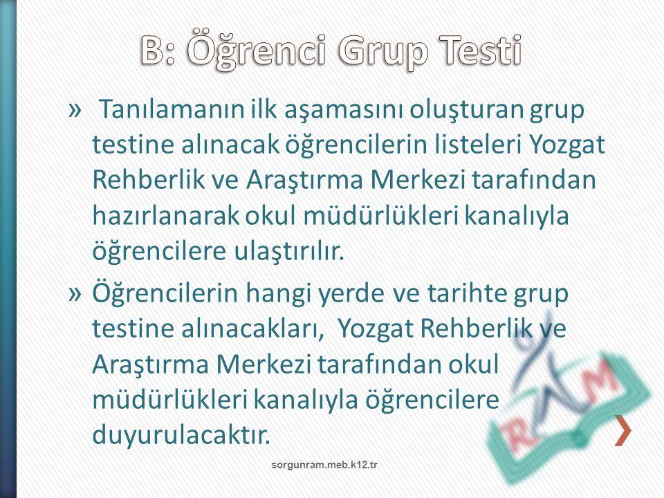 B: Öğrenci Grup Testi