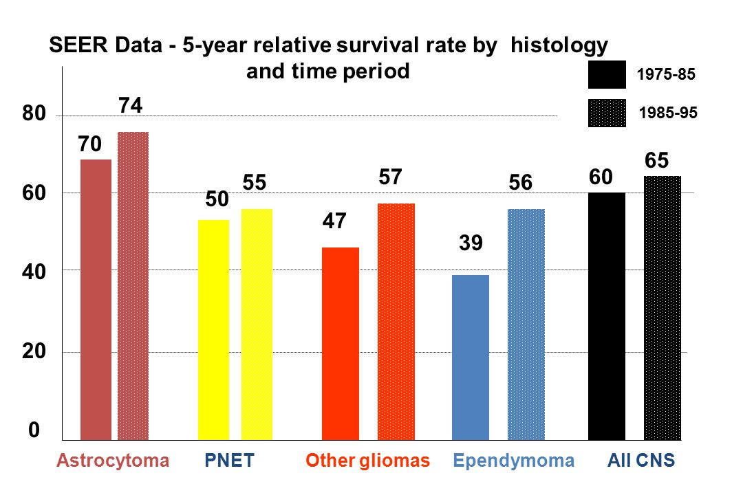 SEER Data - 5-year relative survival rate by histology and time period
