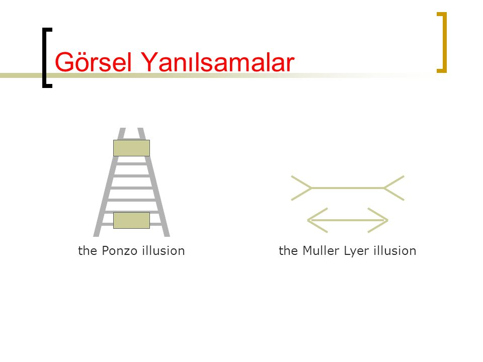 Görsel Yanılsamalar the Ponzo illusion the Muller Lyer illusion