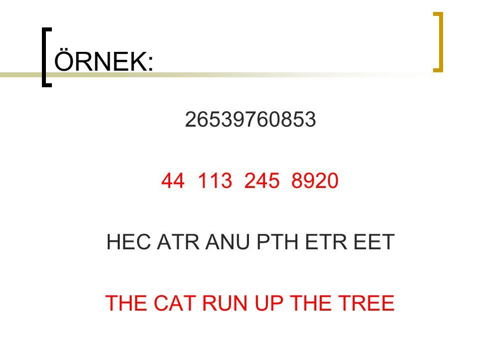 ÖRNEK: 26539760853 44 113 245 8920 HEC ATR ANU PTH ETR EET