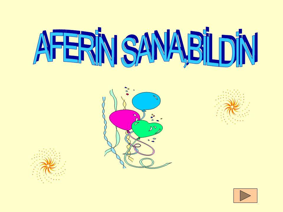 AFERİN SANA,BİLDİN