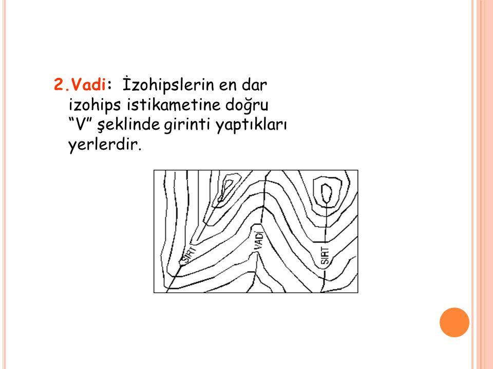 2.Vadi: İzohipslerin en dar izohips istikametine doğru V şeklinde girinti yaptıkları yerlerdir.