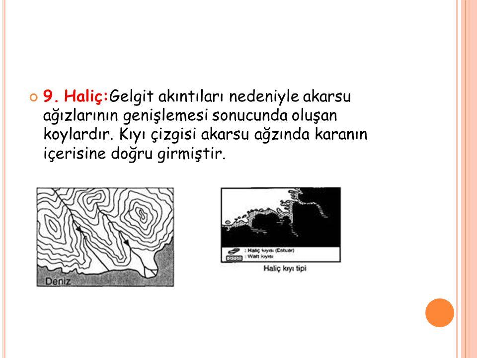 9. Haliç:Gelgit akıntıları nedeniyle akarsu ağızlarının genişlemesi sonucunda oluşan koylardır.