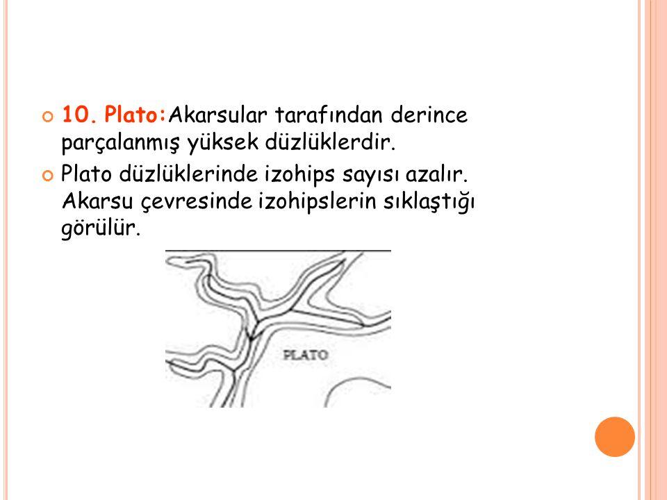 10. Plato:Akarsular tarafından derince parçalanmış yüksek düzlüklerdir.