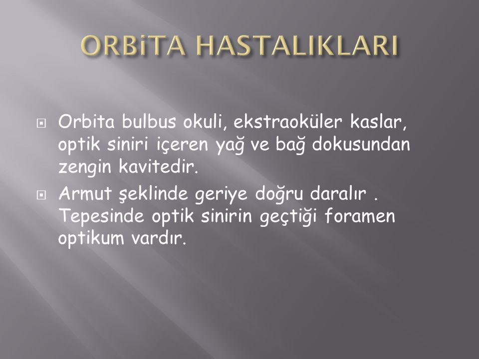 ORBiTA HASTALIKLARI Orbita bulbus okuli, ekstraoküler kaslar, optik siniri içeren yağ ve bağ dokusundan zengin kavitedir.