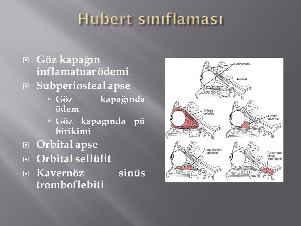 Hubert sınıflaması Göz kapağın inflamatuar ödemi Subperiosteal apse