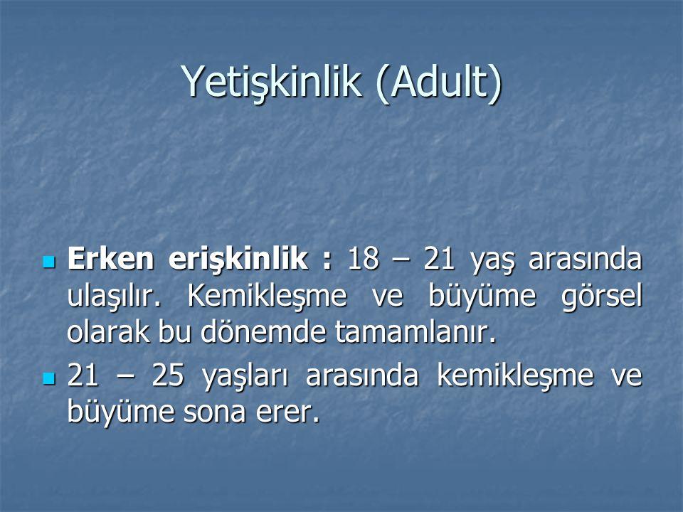 Yetişkinlik (Adult) Erken erişkinlik : 18 – 21 yaş arasında ulaşılır. Kemikleşme ve büyüme görsel olarak bu dönemde tamamlanır.