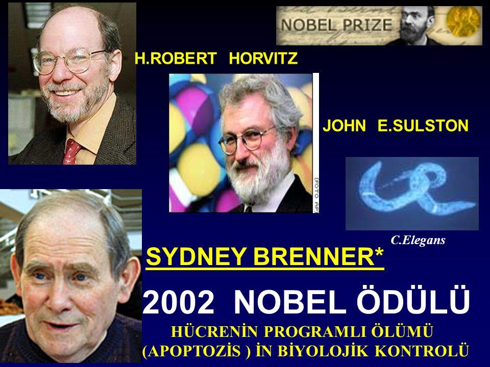 2002 NOBEL ÖDÜLÜ SYDNEY BRENNER* C.Elegans H.ROBERT HORVITZ