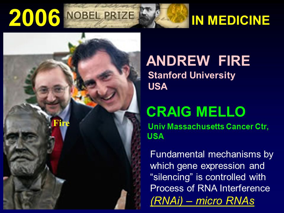 2006 ANDREW FIRE CRAIG MELLO IN MEDICINE Stanford University USA