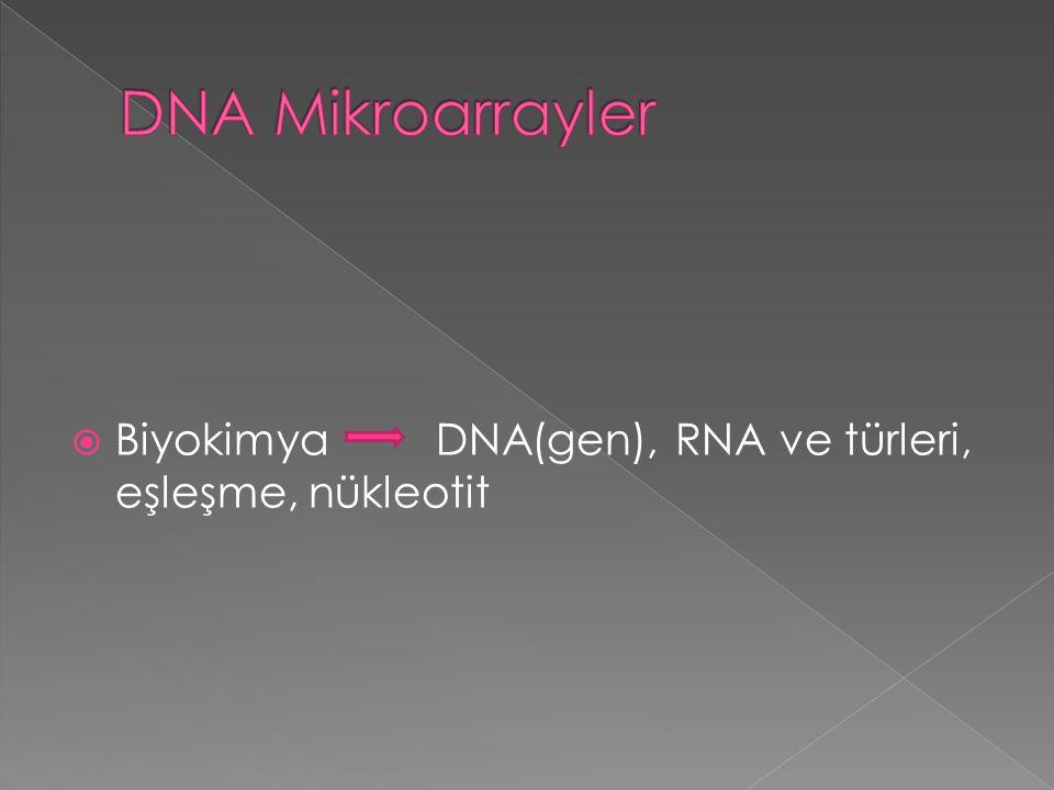 DNA Mikroarrayler Biyokimya DNA(gen), RNA ve türleri, eşleşme, nükleotit