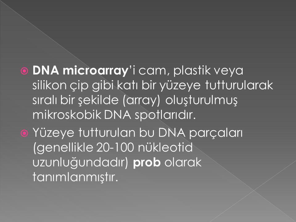 DNA microarray'i cam, plastik veya silikon çip gibi katı bir yüzeye tutturularak sıralı bir şekilde (array) oluşturulmuş mikroskobik DNA spotlarıdır.