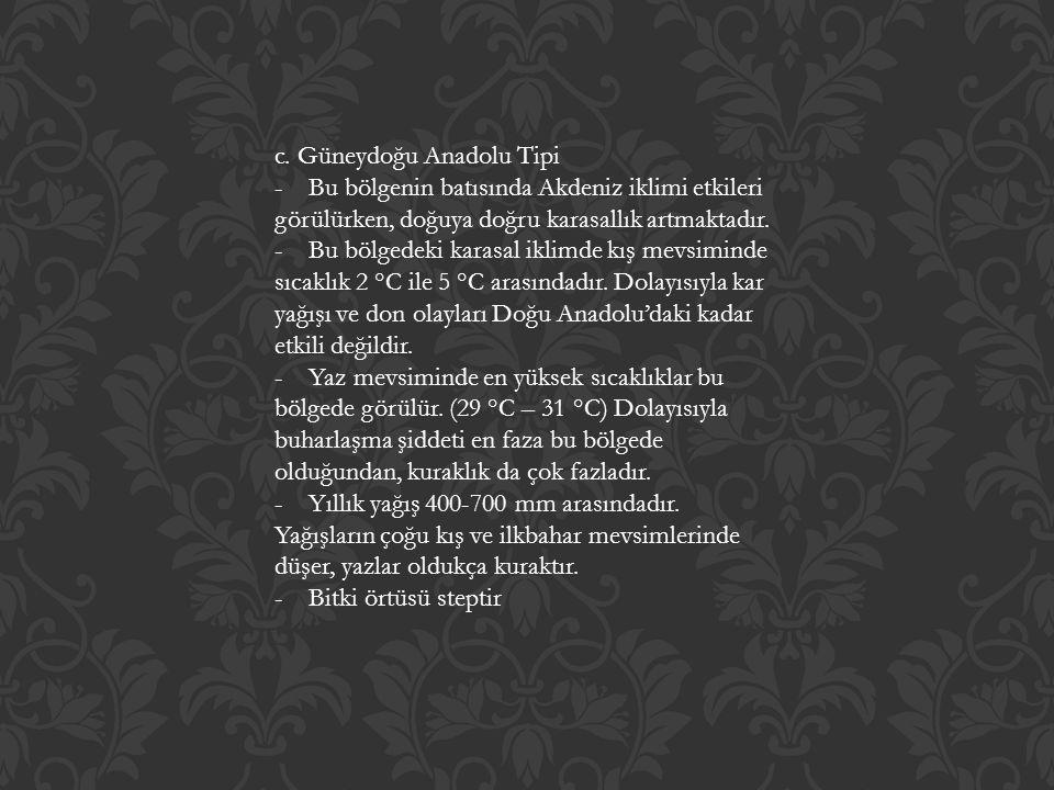 c. Güneydoğu Anadolu Tipi