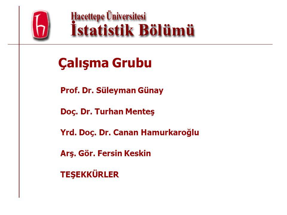 Çalışma Grubu Prof. Dr. Süleyman Günay Doç. Dr. Turhan Menteş