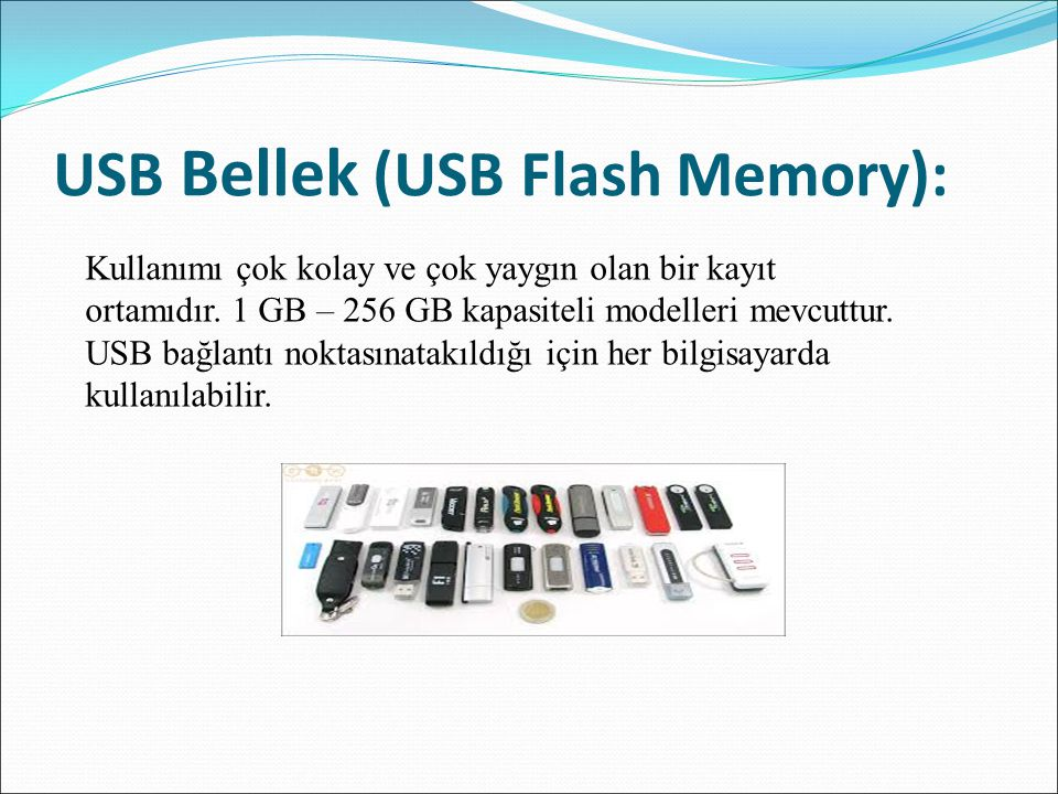 USB Bellek (USB Flash Memory):