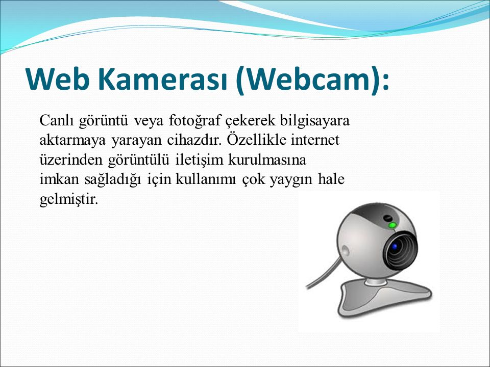Web Kamerası (Webcam):