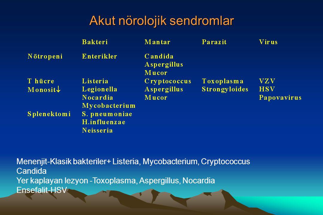 Akut nörolojik sendromlar